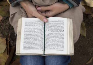 Person sitting  reading a book(Bible)